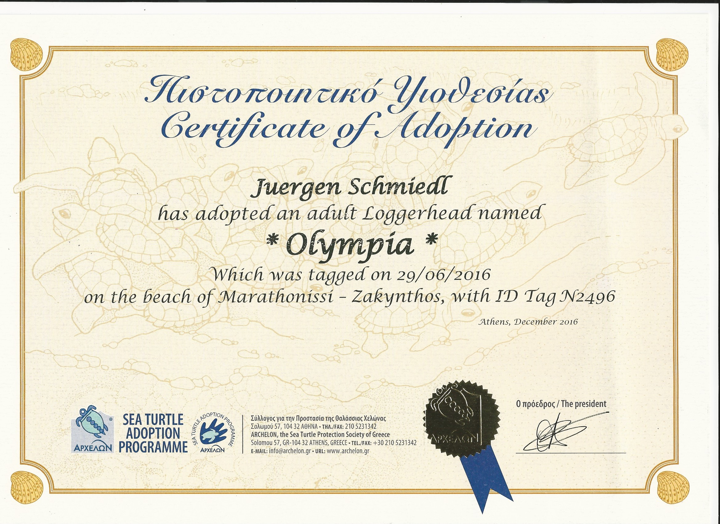 Certificate-Olympia